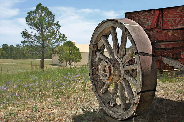 Wagon Art Print featuring the photograph Colorado - Where The Columbines Grow by Christine Till