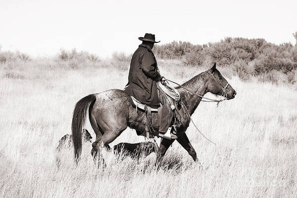 Cowboy Art Print featuring the photograph Cowboy And Dogs by Cindy Singleton