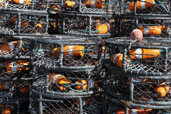 Harbor Art Print featuring the photograph Crab Pots by Brandon Bourdages