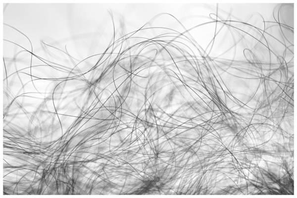 Art Print featuring the photograph Curves by Ganesh H Shankar