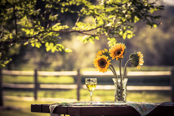 Sunflower Art Print featuring the photograph Days Of Summer by Jacquelyn Crady