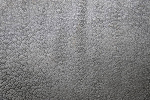 Rhino Print featuring the photograph detail of the skin of an Indian rhinoceros in a zoo Netherlands by Ronald Jansen
