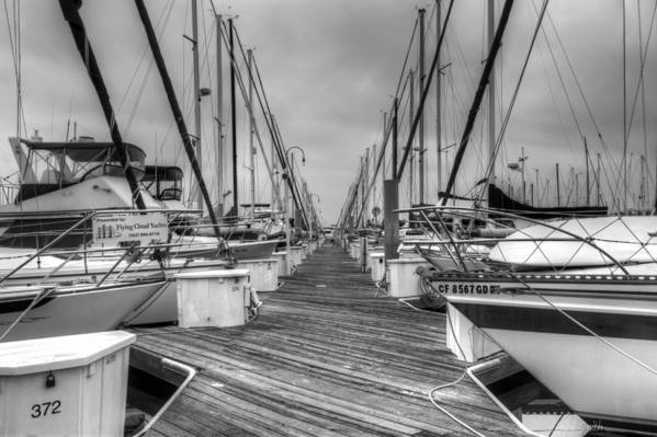 Alone Art Print featuring the photograph Dock Life by Heidi Smith
