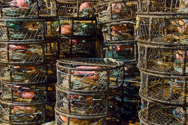 Dungeness Crab Pots Art Print featuring the photograph Dungeness Crab Pots Waiting On A San Francisco Dock by Scott Lenhart