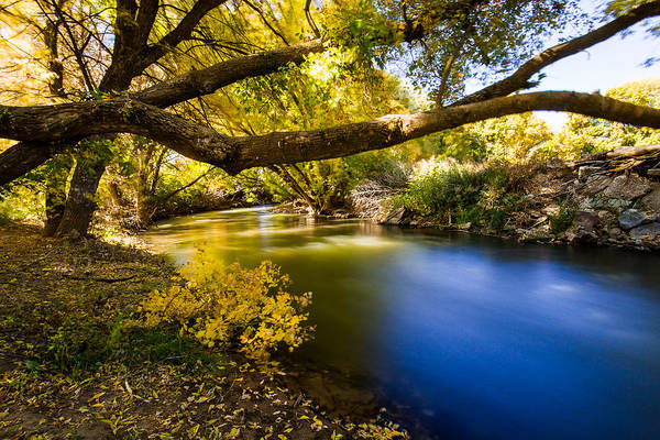 River Art Print featuring the photograph East Canyon Creek by Christian Peay