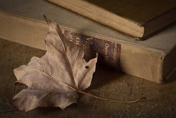 Book Art Print featuring the photograph Fading by Amy Weiss