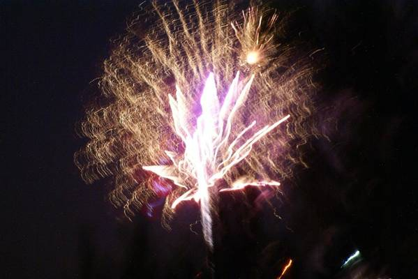 Fairy Fireworks Art Print featuring the photograph Fairies In The Fireworks I by Jacqueline Russell