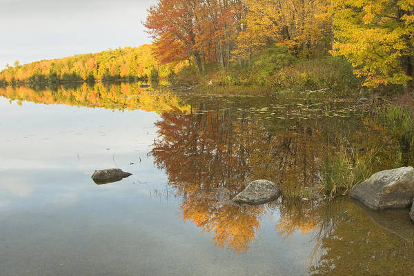 Maine Art Print featuring the photograph Fall Colors On Taylor Pond Mount Vernon Maine by Keith Webber Jr