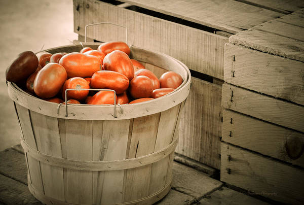 Bushel Print featuring the photograph Farmers Market Plum Tomatoes by Julie Palencia