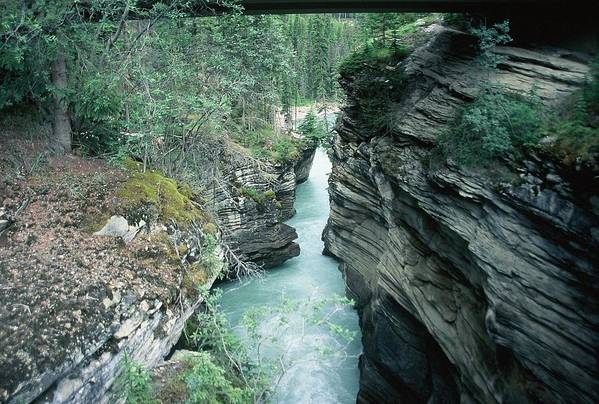 Scenic Art Print featuring the photograph Fast Moving Water by Dick Willis