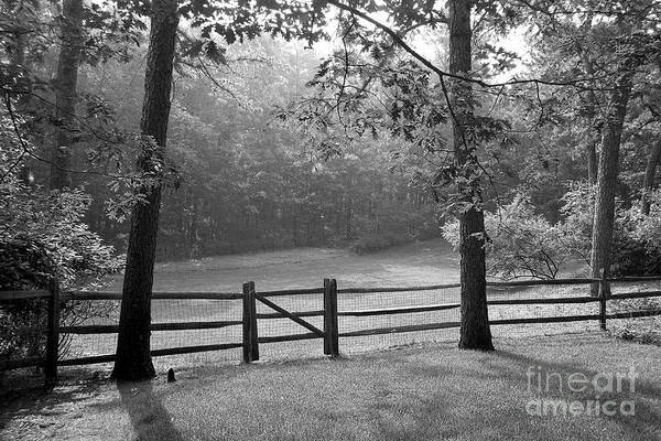 Black & White Art Print featuring the photograph Fence by Tony Cordoza