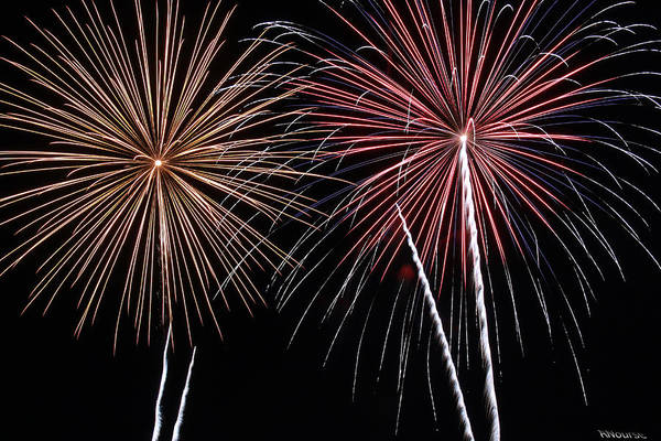 Fireworks Art Print featuring the photograph Fireworks by Andrew Nourse