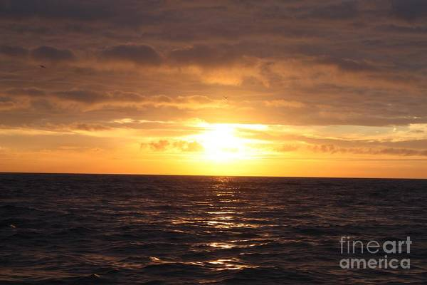 Fishing Into The Sunrise Art Print featuring the photograph Fishing Into The Sunrise by John Telfer