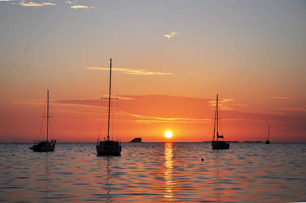Florida Art Print featuring the photograph Florida Sailboat Sunset by Bill Cannon