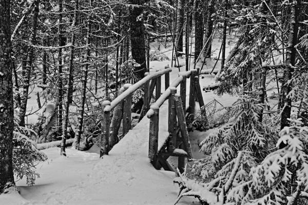 Maine Art Print featuring the photograph Foot Bridge In Winter by David Rucker