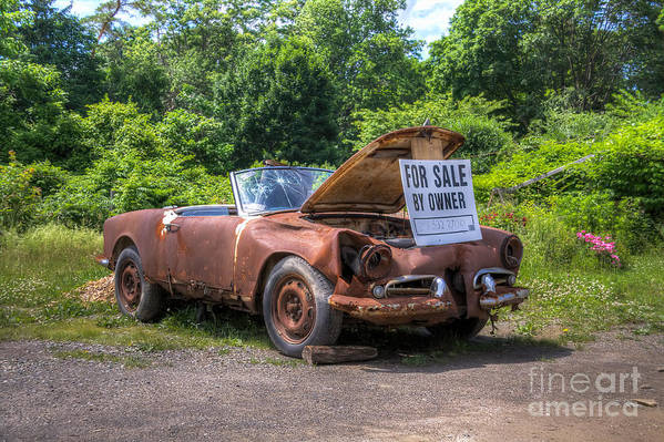 Car Art Print featuring the photograph For Sale By Owner by Rick Kuperberg Sr