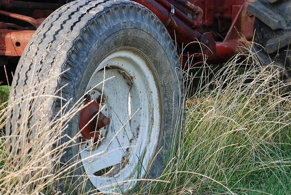 Ford Art Print featuring the photograph Ford Tractor Tire by Jennifer Ancker