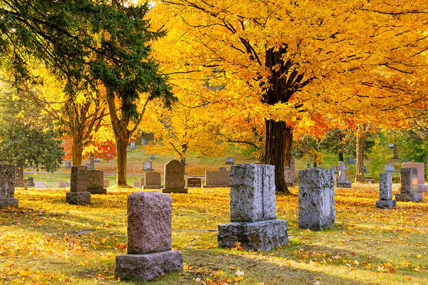 forest Hill forest Hill Cemetery woodland Autumn Cemetery Graveyard Trees Leaves Duluth Serenity Peace Tombstones Wind winds Of Change blowing Leaves nature fall Color mary Amerman Art Print featuring the photograph Autumn At Forest Hill by Mary Amerman