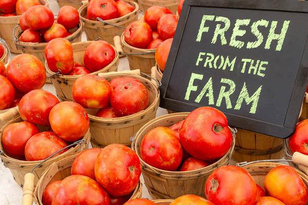 Brown Art Print featuring the photograph Fresh Tomatoes In Baskets At Farmers Market by Teri Virbickis