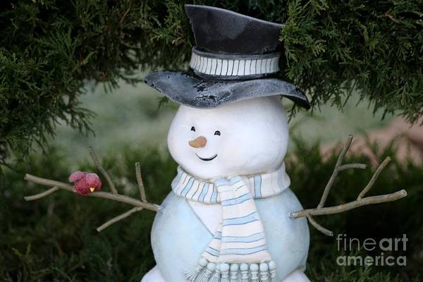 Frosty Art Print featuring the photograph Frosty by Living Color Photography Lorraine Lynch