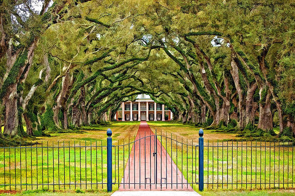 Oak Alley Plantation Art Print featuring the photograph Gateway To The Old South Paint by Steve Harrington