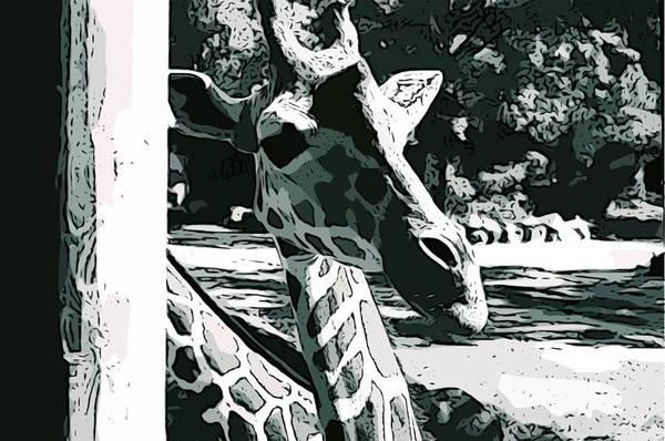Giraffe Art Print featuring the photograph Giraffe Closeup by Tamara Gantt