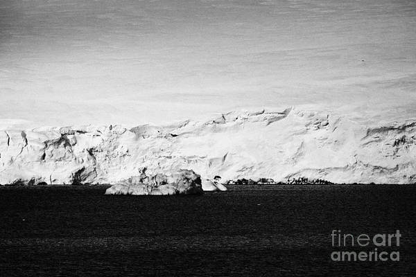 Snow Art Print featuring the photograph glacial shoreline with snow cap on anvers island and neumayer channel Antarctica by Joe Fox