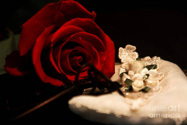 Rose Art Print featuring the photograph Going Out by Robin Lynne Schwind