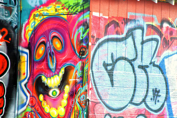 Graffiti Art Print featuring the photograph Graffiti 12 by Tera Bunney