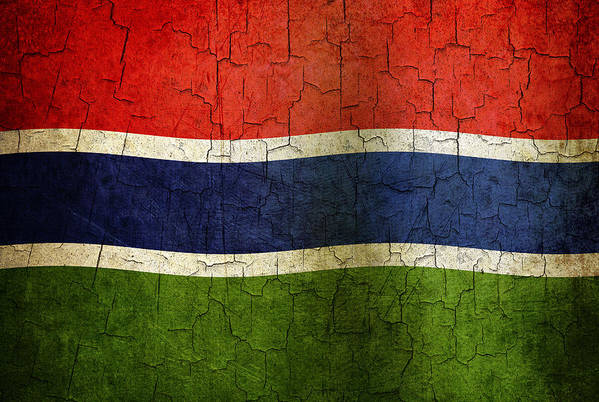 Aged Art Print featuring the digital art Grunge Gambia Flag by Steve Ball