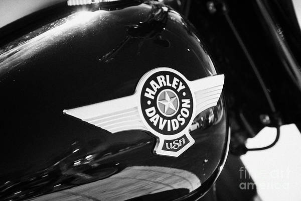 Harley-davidson Art Print featuring the photograph Harley Davidson Aviation Themed Star Logo On Fat Boy Bike In Orlando Florida Usa by Joe Fox