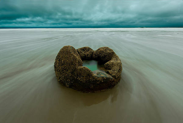 Moeraki Boulder Art Print featuring the photograph Hatched by Little m Photography