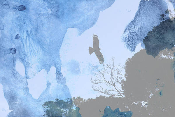 Hawk Art Print featuring the photograph Hawk In Flight 1 by Beverly Claire Kaiya