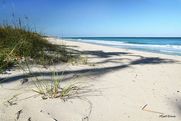 Beach Print featuring the photograph Hidden Palms by Michelle Wiarda