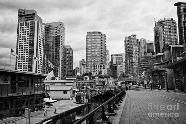 High-rise Art Print featuring the photograph high rise apartment condo blocks in the west end coal harbour marina Vancouver BC Canada by Joe Fox