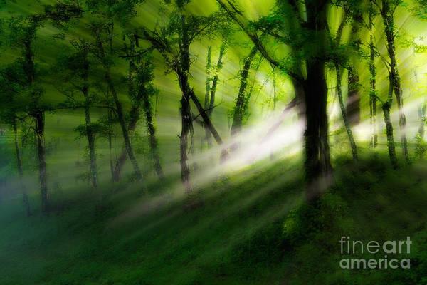 Blue Ridge Parkway Art Print featuring the photograph Hope Lights Eternal - A Tranquil Moments Landscape by Dan Carmichael