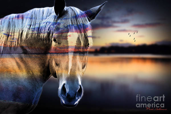 Horse Art Print featuring the photograph Horse 6 by Mark Ashkenazi