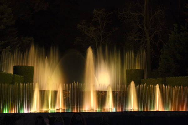 Illuminated Dancing Fountains Among Shrubbery Art Print featuring the photograph Illuminated Dancing Fountains by Sally Weigand