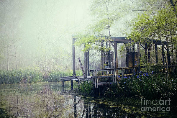 Bayou Art Print featuring the photograph I'm Going Back Someday by Katya Horner