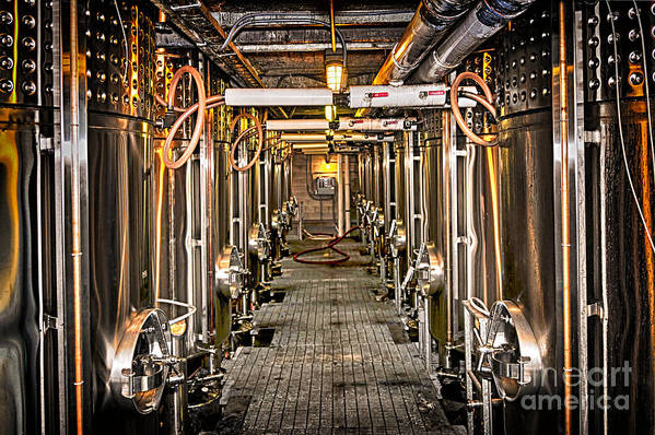 Wine Art Print featuring the photograph Inside Winery by Elena Elisseeva