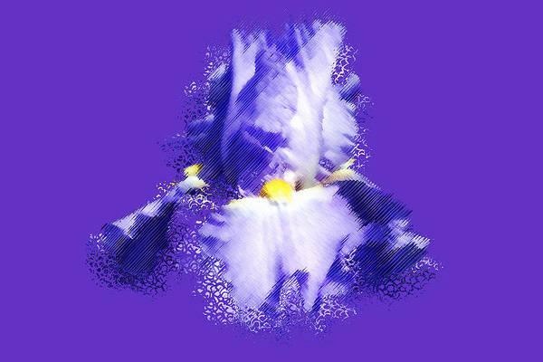 Iris Art Print featuring the digital art Iris Passementerie by Susan Elizabeth Dalton