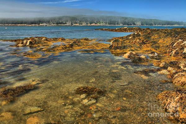 Acadia National Park Art Print featuring the photograph Isle Au Haut Beach by Adam Jewell