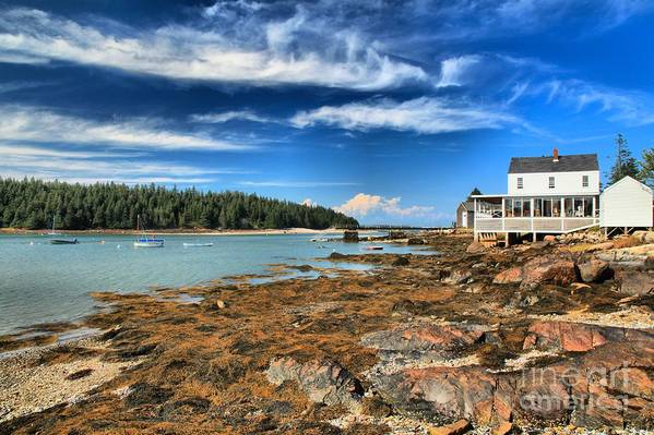 Acadia National Park Art Print featuring the photograph Isle Au Haut House by Adam Jewell