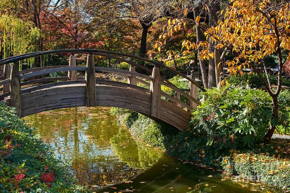 Garden Art Print featuring the photograph Japanese Garden In Fall by Iris Greenwell