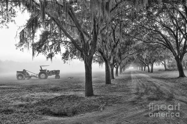 Low Art Print featuring the photograph John Deer Tractor And The Avenue Of Oaks by Scott Hansen