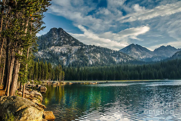 Anthony Lake Art Print featuring the photograph Lakeshore by Robert Bales