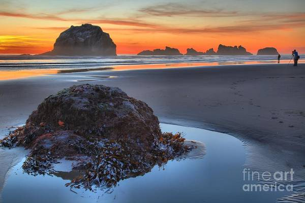 Bandon Beach Art Print featuring the photograph Lining Up For The Shot by Adam Jewell