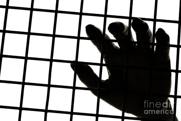 Hand Art Print featuring the photograph Lost Freedom by Olivier Le Queinec