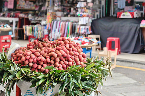Africa Art Print featuring the photograph Lychees by Tom Gowanlock