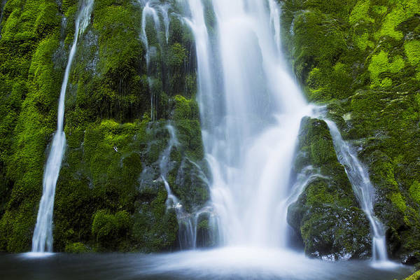 Water Art Print featuring the photograph Madison Creek Falls #2 by Roy Cage